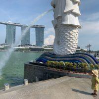 "RAKUGAKIYA maco Singapore2019 ""wall-y"""